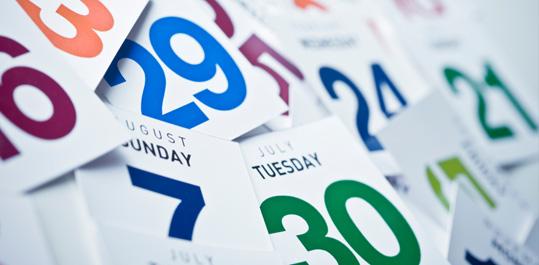 días calendario