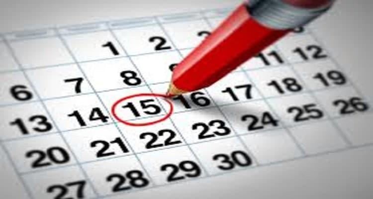 calendario boligrafo