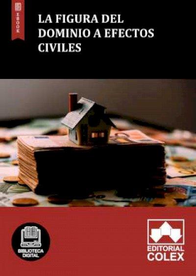 La figura del dominio a efectos civiles