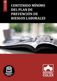 Contenido mínimo del Plan de prevención de riesgos laborales