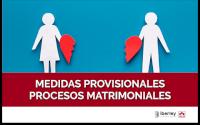 CURSO SOBRE LAS MEDIDAS PROVISIONALES EN LOS PROCESOS MATRIMONIALES