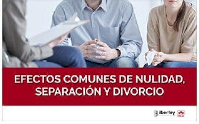 CURSO SOBRE LOS EFECTOS COMUNES A LA NULIDAD, SEPARACIÓN Y DIVORCIO