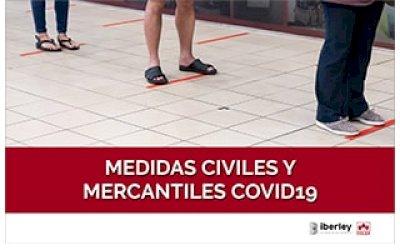 CURSO SOBRE LAS MEDIDAS CIVILES Y MERCANTILES POR EL COVID-19