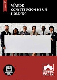 Vías de constitución de un holding