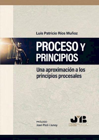 Proceso y principios