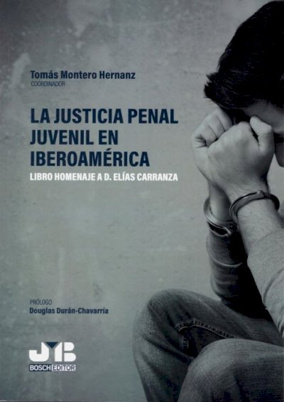 Justicia penal juvenil en Iberoamérica