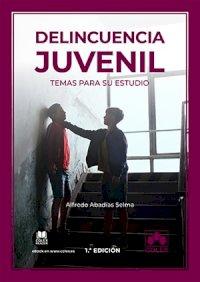 Delincuencia juvenil: temas para su estudio