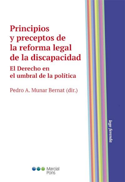Principios y preceptos de la reforma legal de la discapacidad