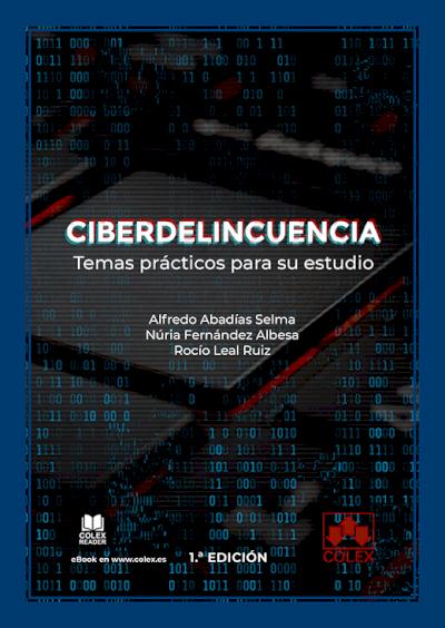 Ciberdelincuencia: temas prácticos para su estudio
