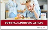 CURSO SOBRE EL DERECHO A ALIMENTOS DE LOS HIJOS