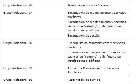 Artículo 42. Grupos profesionales.