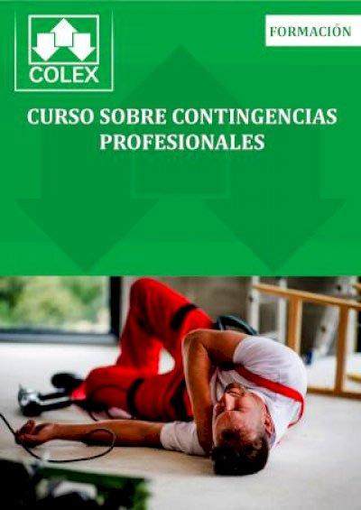 Curso sobre Contingencias Profesionales